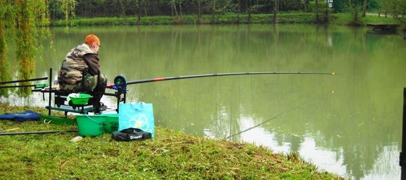 Image De Canne A Peche cannes à pêche : les meilleurs modèles pour la pêche au coup | ma