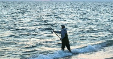 canne-a-peche-surfcasting