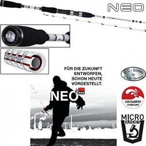 neo-salt-5