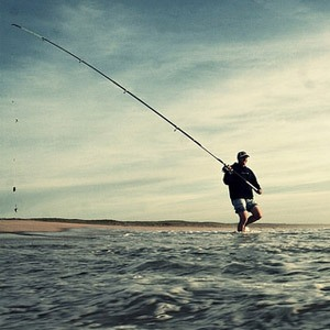 type-canne-a-peche-surfcasting