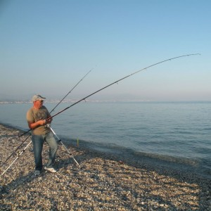 types-cannes-a-peche-surfcasting