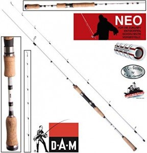 dam-cannes-4